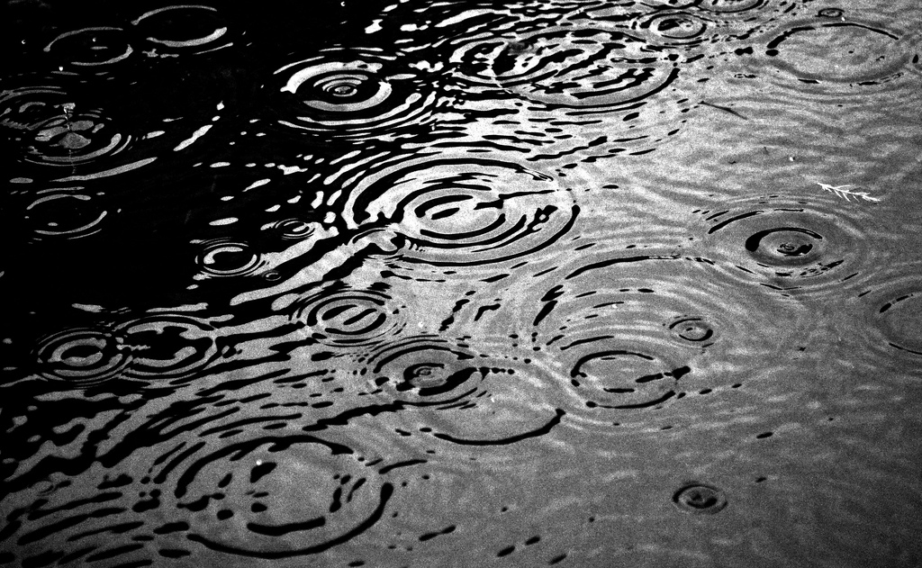 Drop Of Water Falling From A Leaf Dark Background Wallpaper 5 Amazing Facts You Didn T Know About Uk Rain