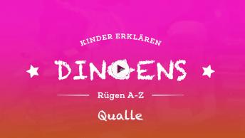 Insel_Ruegen_Qualle_BIG