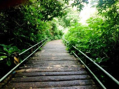 Pendakian Perdana ke Gunung Gede | Untold Contemplation