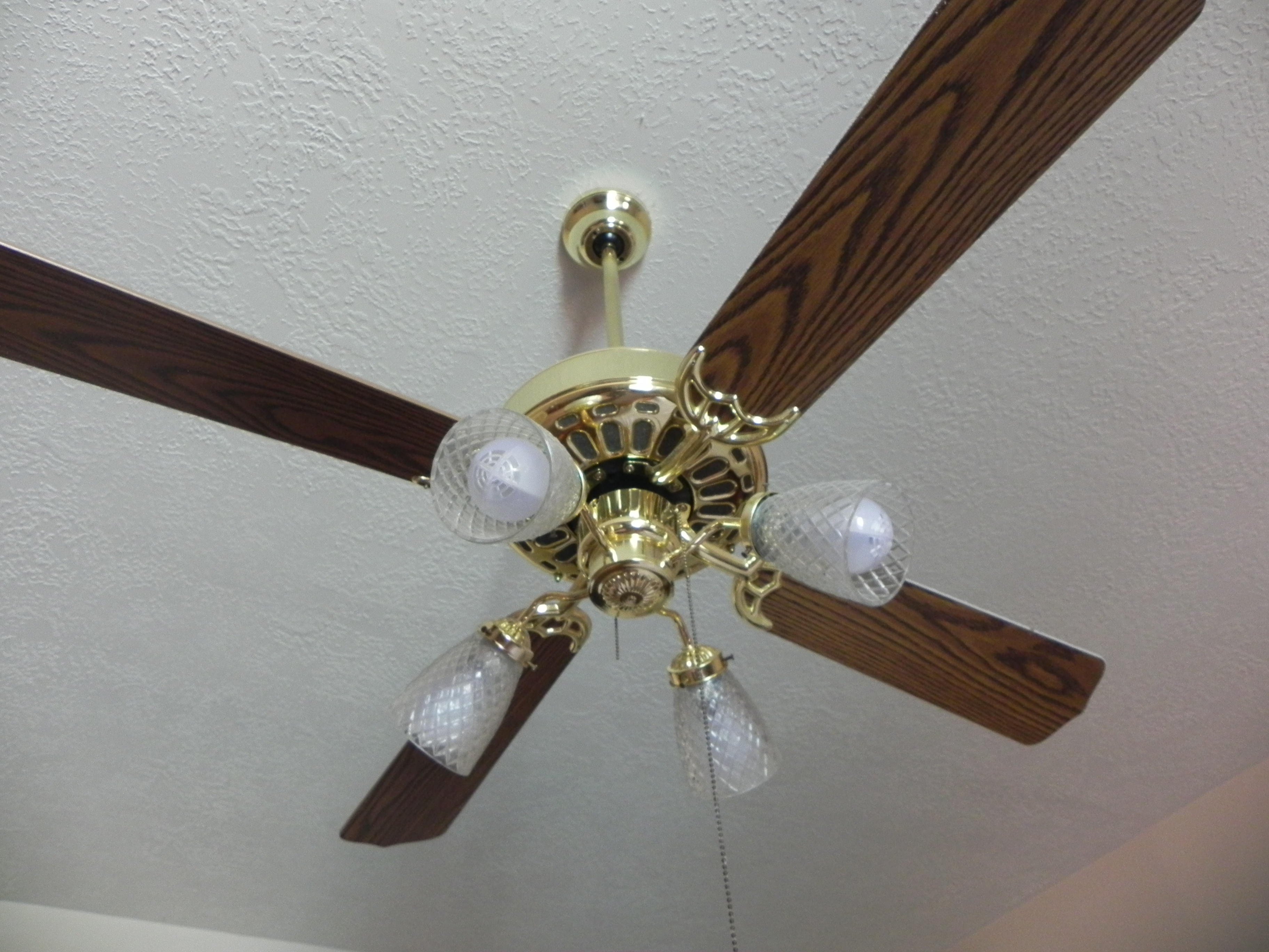 White Gold Ceiling Fan Updating The Ceiling Fans With Diet Coke In Hand