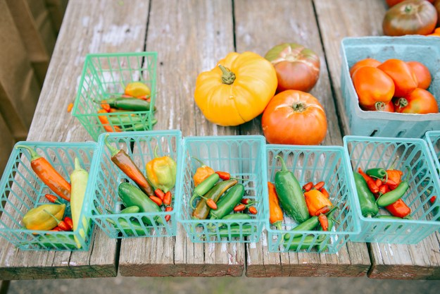 Farm Scenes + Roasted Beet, Cucumber, Mint & Heirloom Tomato Salad // www.WithTheGrains.com