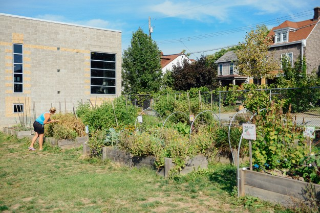 Homewood YMCA Garden by Quelcy 05