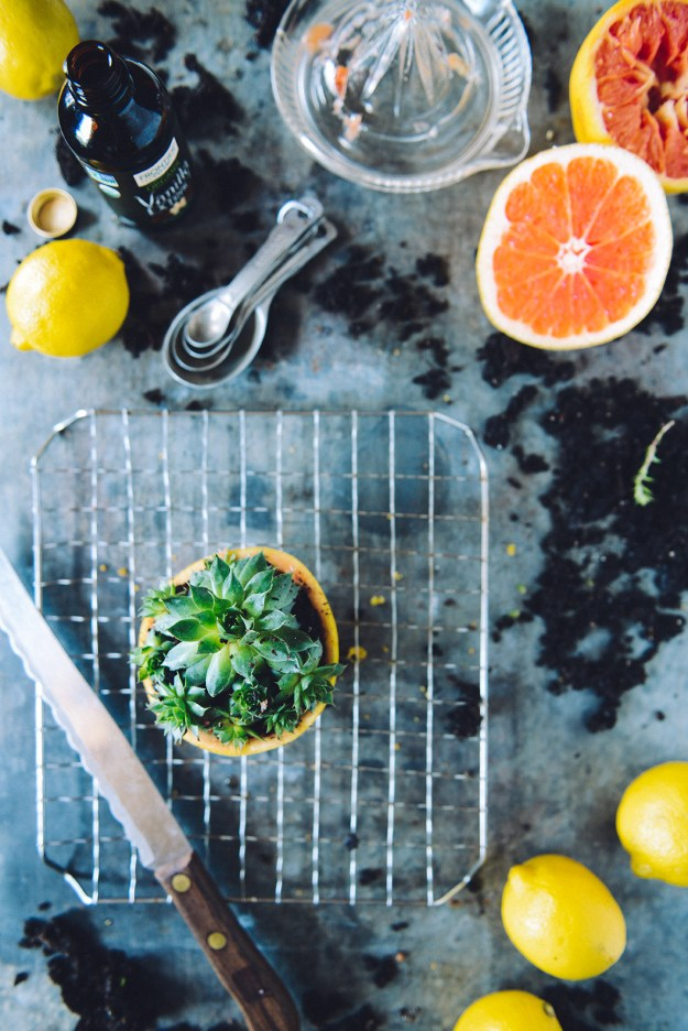 Desert Inspired Lemon, Ginger & Turmeric Cornmeal Layer Cake with Grapefruit Frosting & A Living Succulent // www.WithTheGrains.com