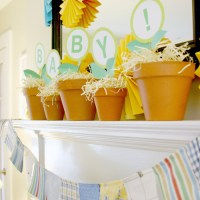 A Vegetable Garden Baby Shower