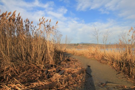 View from the path to Saugerties Lighthouse, November 2011