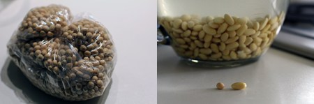 DIY Soy Milk: Before and after soaking the beans