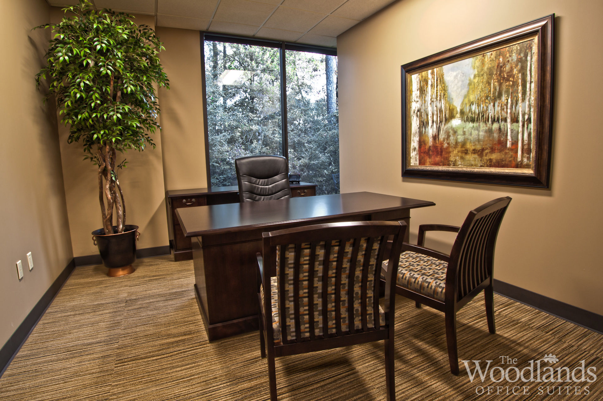 Walkout Basement Ideas Office Space - The Woodlands Office Suites