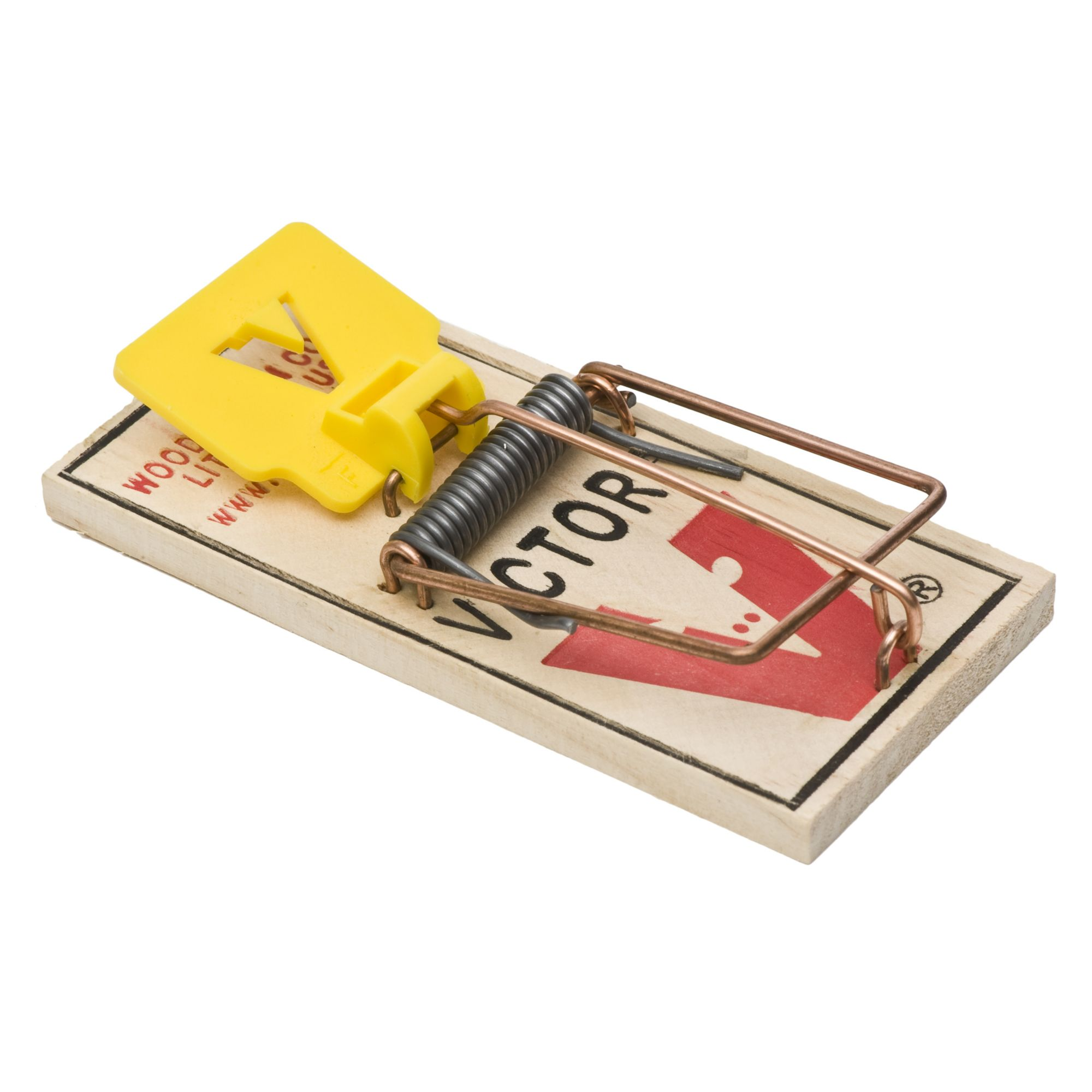 Electrische Muizenval Case Of Easy Set Mouse Traps Bulk Wooden Traps
