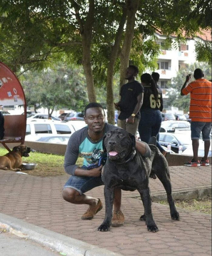 Pent Dog Show 2017 Ghana 1