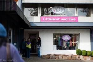 Little Lam and Ewe