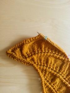 Begonia Swirl - tricot chale-4