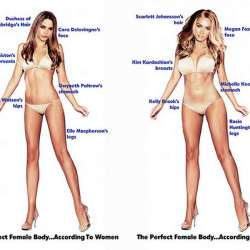 "The ""perfect body"" according to male and females"