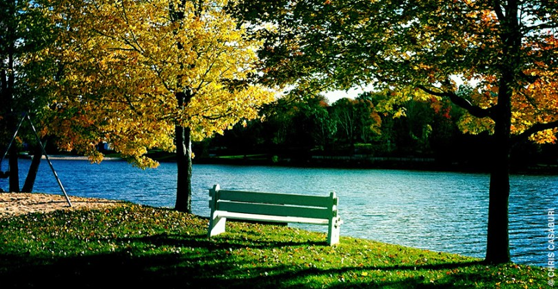 Fall Bench, Beach 7, Lake Carmel, NY, Chris Casaburi, Photographer