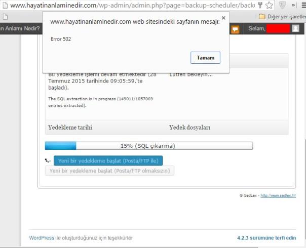 backup Scheduler nginx 502 error (2)