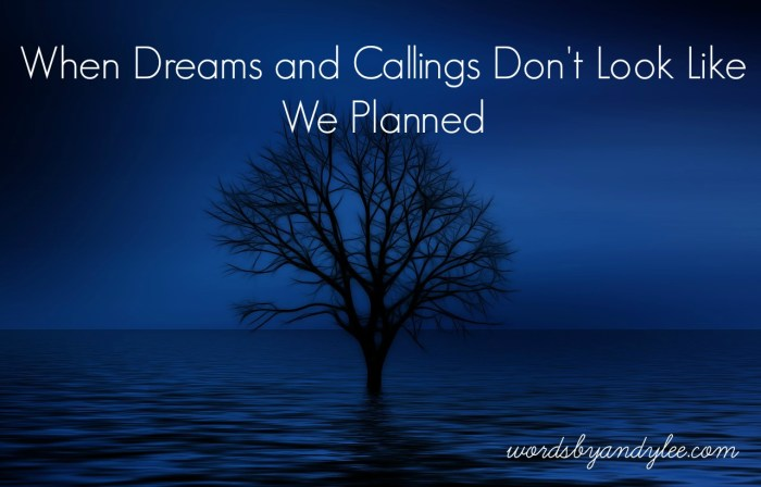When Dreams and Calling Don't Look Like We Planned
