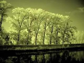 Aelse_ilovenature_glow_5663_h