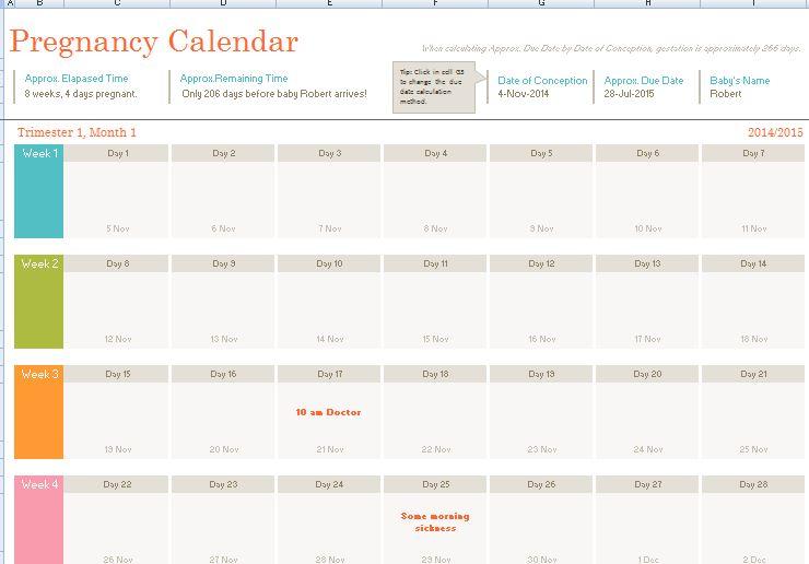 Pregnancy Calendar Template Formal Word Templates