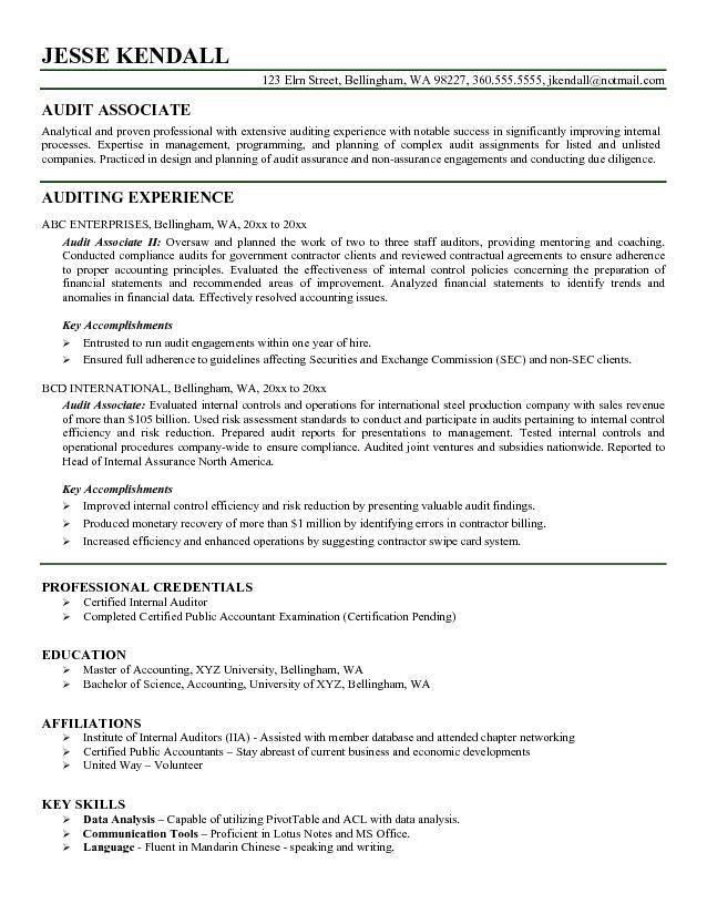 sample resume for auditor - Ozilalmanoof