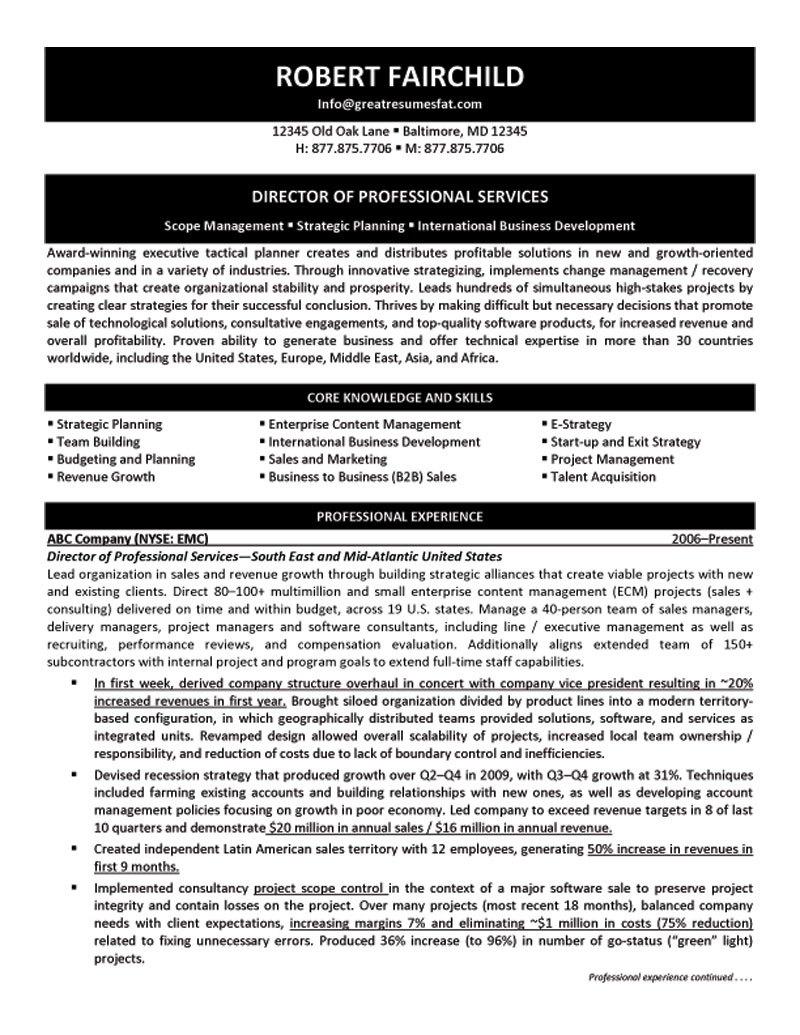 cv project management officer