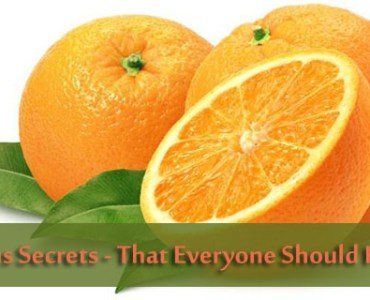 Citrus Fruits secrets