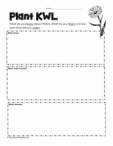 Plants KWL Worksheets
