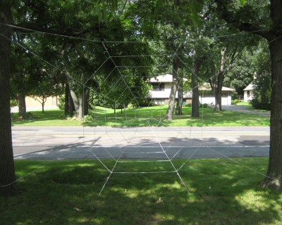 Finished web