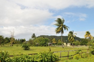St Lucia countryside