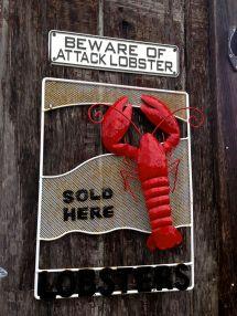 Mmm Lobster