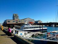 Cape Cod Provincetown Harbor 2