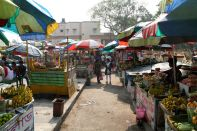 Dakhineswar Market Path