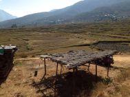 Lobesa Valley Shade bhutan
