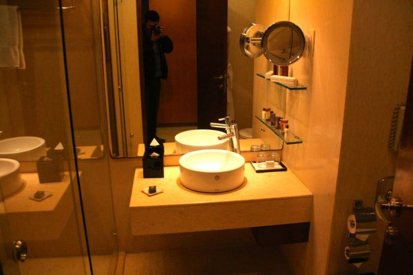 Sheraton Udaipur Bathroom