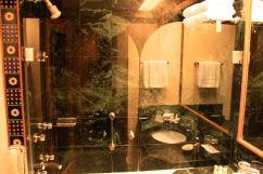 Trident Jaipur Shower