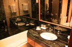 Trident Jaipur Sink