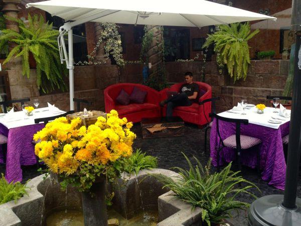 Andean Wings Courtyard David