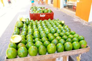 Cartagena Fruit