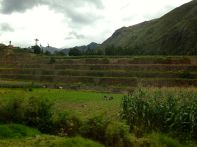 Inca Ruins on the side of the road