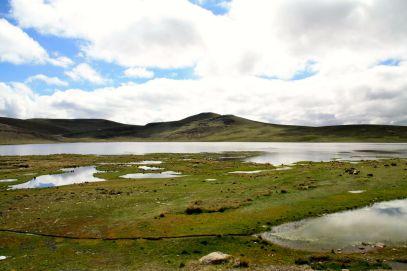 Laguna Lagunillas View
