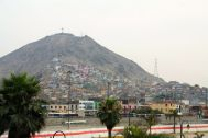Lima on mountainside