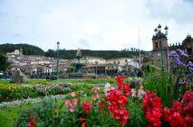 Plaza de Armas Stores Flowers