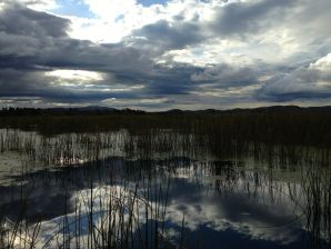 Titicaca Lake Reed View