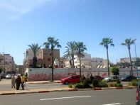 Casablanca Palms