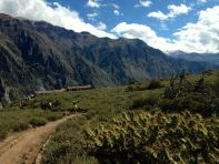 Colca Canyon Path