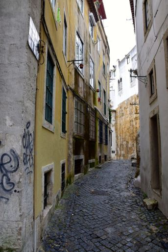 Lisbon Street-2