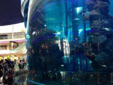 Morocco Mall Aquarium