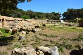 Carthage Amphitheater Sheep - Version 2