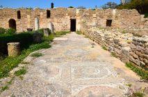 Carthage Villas Mosaic