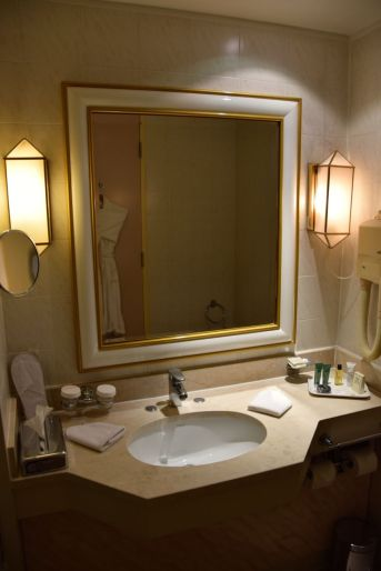 Hilton Alger Room Bathroom