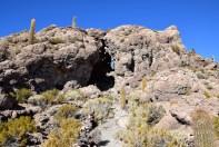 Uyuni Salt Flats Isla Incahuasi Top