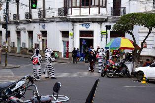Sucre Street Zebras
